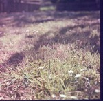 1May 2012_1